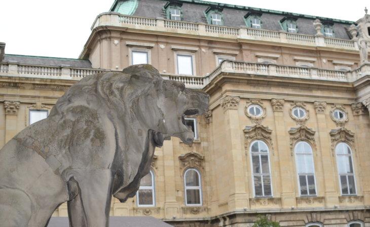 Le cours du château de Budapest