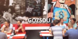 Cour Gozsdu