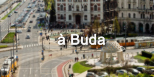 Restaurants à Buda