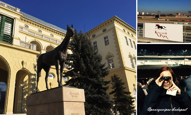 L'hippodrome Budapest