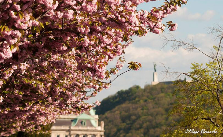 Voyage à Budapest au printemps